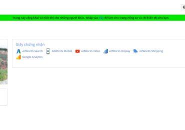 Trọn bộ câu hỏi thi chứng nhận Google AdWords cơ bản